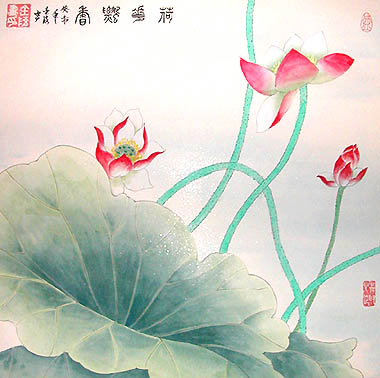 Lotus Rebirth